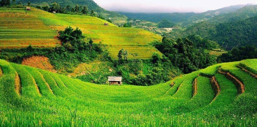 Đất phi nông nghiệp có được chuyển nhượng không?